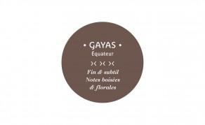Tablette Gayas